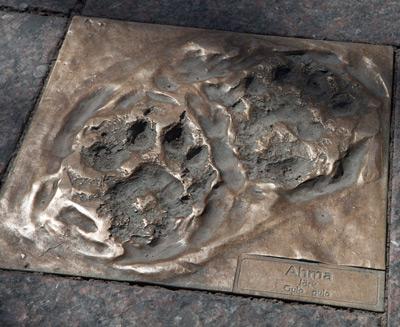 Andy Best ja Merja Puustinen: Hiljaisuuden jalanjäljet, 2000. Et voi käyttää kuvaa kaupallisiin tarkoituksiin. © Kuva: Helsingin taidemuseo / Hanna Kukorelli