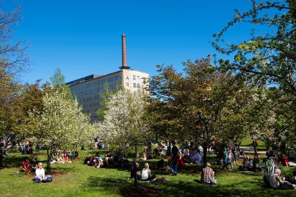 People spending time outdoors in the park on a sunny summer day, with the Arabia factory in the background.
