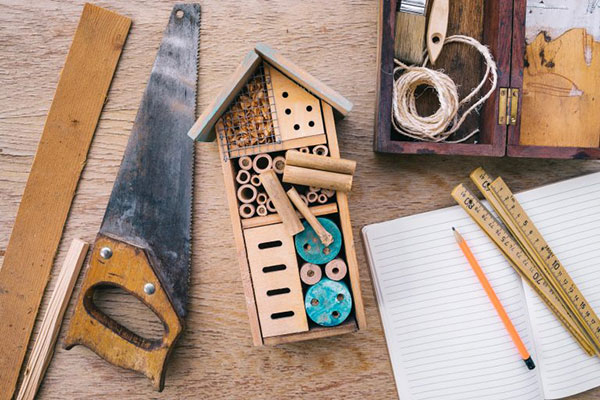 Build a hotel for insects. Pictured are some necessary tools, including a saw, and a finished insect hotel.