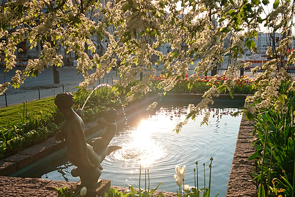 Esplanade park and flowvers. Photo: Mika Lappalainen.