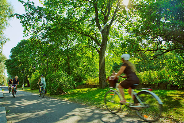Cyclists in a park. Photo: Lauri Rotko, City of Helsinki